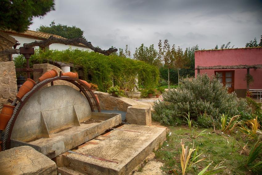 Antiga sínia a Mas Masdeu / Antigua noria en Mas Masdeu