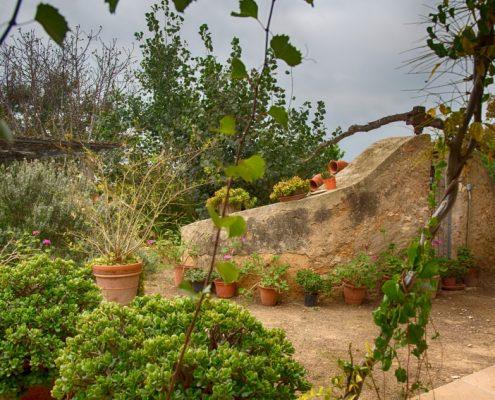 antiga sínia del Mas Masdeu, allotjament rural al delta de l'Ebre