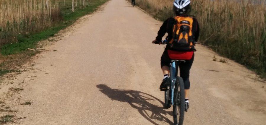 rutes en bicicleta pel delta de l'Ebre